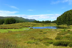 An inland scene of an Azorean island. Verdant grasses and trees over the volcanic landscape under an azure sky. The water offers beautiful reflections of a Royalty Free Stock Photo