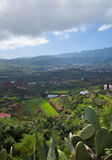 Inlands- Gran Canaria, sikt in mot centrala berg Arkivbild