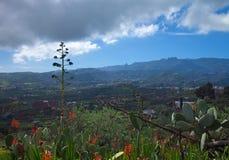 Inlands- Gran Canaria, sikt in mot centrala berg Royaltyfri Bild