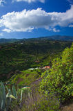 Inlands- Gran Canaria, sikt in mot centrala berg Arkivbilder