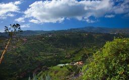 Inlands- Gran Canaria, sikt in mot centrala berg Royaltyfria Bilder
