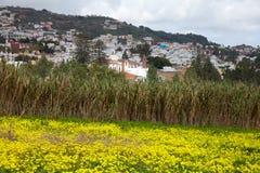 Inlands- Gran Canaria, sikt in mot den historiska staden Teror Arkivfoton