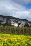 Inlands- Gran Canaria, sikt in mot den historiska staden Teror Royaltyfri Foto