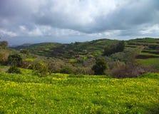 Inlands- Gran Canaria, vinter Fotografering för Bildbyråer