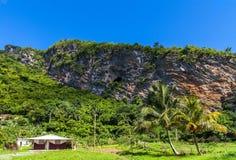 Inlands- landskap för Kuba i toppiga bergskedjan Maestra berg Royaltyfria Bilder