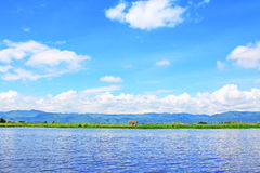 Inle Lake Floating Farm, Myanmar Royalty Free Stock Photography