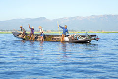 INLE LAKE, MYANMAR - NOVEMBER 23, 2015: Local workers collecting Royalty Free Stock Image