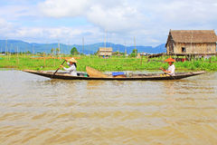 Inle Lake Resident Paddling On The Lake, Myanmar. Inle Lake Resident Paddling On The Lake In Myanmar Royalty Free Stock Photography