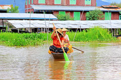 Inle Lake Resident Paddling On The Lake, Myanmar. Inle Lake Resident Paddling On The Lake In Myanmar Stock Photography