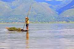 Inle Lake Resident Paddling On The Lake, Myanmar. Inle Lake Resident Paddling On The Lake In Myanmar Stock Photos