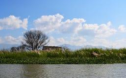 Inle sjö Fotografering för Bildbyråer