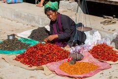 INLE-SJÖ, MYANMAR - December 01, 2014: en oidentifierad kvinna in Fotografering för Bildbyråer