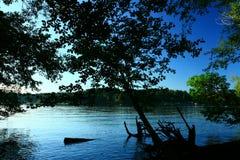 Inlett di nord-ovest pacifico del litorale e della foresta Immagine Stock