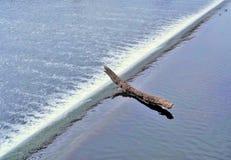 Inloggningsudd av vattenfallet Fotografering för Bildbyråer