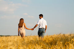 Inlove couple walking through  wheat field Royalty Free Stock Images