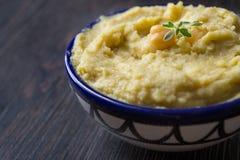 Inmersión de Hummus Imagen de archivo