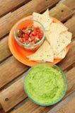 Inmersión del Guacamole con las virutas y la salsa Imagen de archivo libre de regalías
