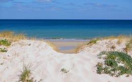 Inmersión en la duna de arena Imágenes de archivo libres de regalías