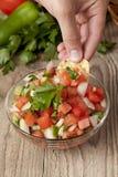 Inmersión fresca de la salsa Foto de archivo libre de regalías