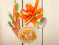Inmersión fresca del hummus con la zanahoria y el apio crudos Imagen de archivo