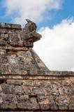Inna jaszczurka na kamiennej cyzelowanie głowie przy Ossuary, Chichen Itza Obraz Stock