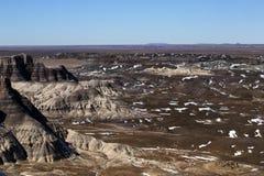 Inna strona Osłupiały Lasowy park narodowy z śniegiem wewnątrz Fotografia Royalty Free