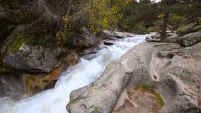 Innaffi entrare nel fiume Eresma al parco naturale di Boca del Asno un giorno piovoso a Segovia, Spagna stock footage