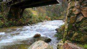 Innaffi entrare sotto un ponte di legno antico nel fiume Eresma al parco naturale di Boca del Asno un giorno piovoso a Segovia, S video d archivio