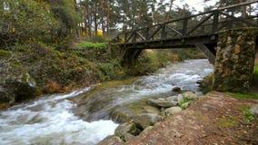 Innaffi entrare sotto un ponte di legno antico nel fiume Eresma al parco naturale di Boca del Asno un giorno piovoso a Segovia, S stock footage