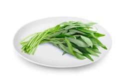 Innaffi gli spinaci in piatto isolato su fondo bianco fotografie stock libere da diritti