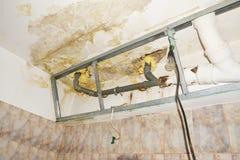 Innaffi il danno nel soffitto del bagno del condominio, sommergentesi dal vicino Immagine Stock