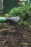 Innaffi il suolo dall'annaffiatoio Primo piano, gardenin di concetto Fotografia Stock