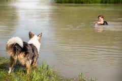 Innaffi l'apprendista del cane di salvataggio e l'apprendimento, donna in un bisogno h del fiume Immagine Stock Libera da Diritti