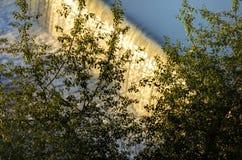 Innaffi la cascata sul fiume della Moldava a Praga durante il sole di primo mattino con vegetazione nella priorità alta Immagini Stock
