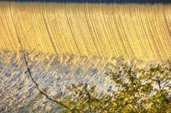 Innaffi la cascata sul fiume della Moldava a Praga durante il sole di primo mattino con vegetazione nella priorità alta Immagini Stock Libere da Diritti