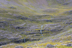 Innaffi la corrente che cade in rovina sopra le scogliere in altopiani scozzesi Fotografia Stock