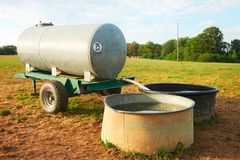 Innaffi la depressione per bere per il bestiame delle mucche al campo immagine stock