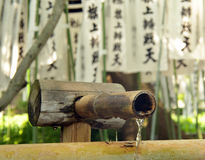 Innaffi la sgocciolatura da una fontana di bambù in un santuario giapponese Fotografia Stock
