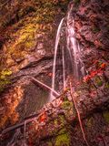 Innaffi la sgocciolatura su una parete della roccia nella foresta fotografia stock