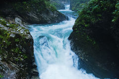 Innaffi le cascate al canyon di Vintgar in alpi slovene Fotografia Stock Libera da Diritti