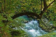 Innaffi le cascate al canyon di Vintgar in alpi slovene Fotografie Stock Libere da Diritti