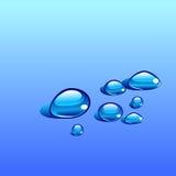 Innaffi le gocce di vettore isolate sui precedenti blu illustrazione vettoriale