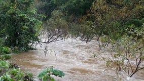 Innaffi le masse sotto timore di scorrimento della corrente dell'acqua di inondazioni stock footage