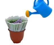 Innaffiando e soldi in un vaso di fiore Immagine Stock