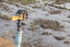 Innaffiatura automatica della testa dell'irrigatore Fotografie Stock