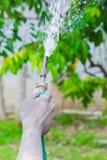 Innaffiatura degli alberi che pompano attraverso il tubo di gomma Immagine Stock Libera da Diritti