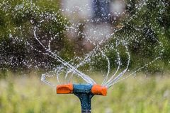 Innaffiatura del giardino facendo uso di uno spruzzatore di rotazione Primo piano di giardinaggio dell'impianto di irrigazione fotografia stock