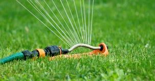 Innaffiatura del prato inglese - spruzzatore dell'acqua che funziona nel cortile dell'erba verde a casa video d archivio