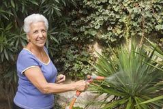 Innaffiatura delle mie piante Immagini Stock Libere da Diritti