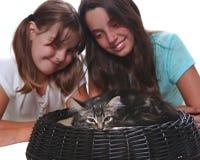 Innehav för två systrar deras unga kattunge royaltyfri fotografi